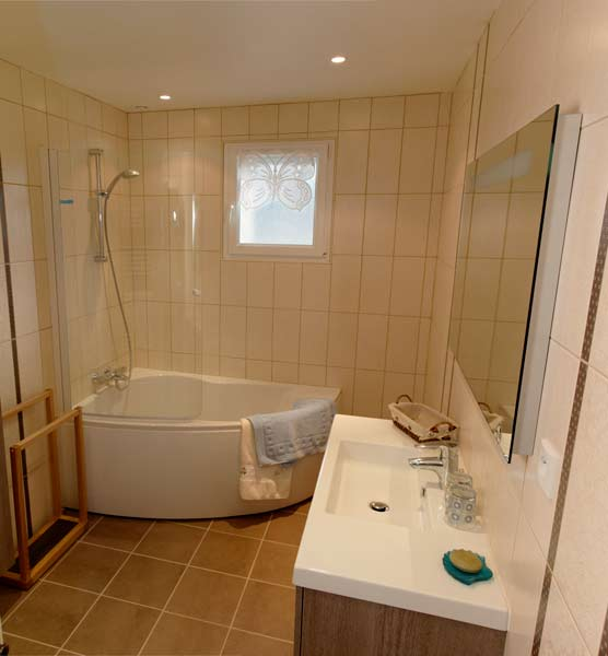 Petite salle de bain avec douche et baignoire maison for Petite salle de douche zen